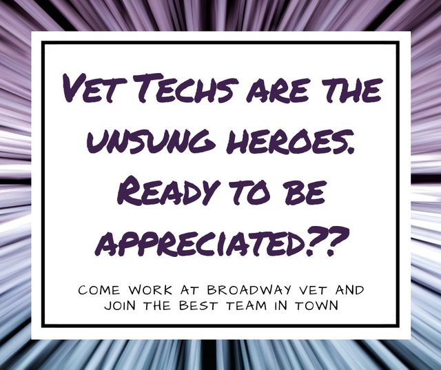 Staff At Broadway Veterinary Hospital