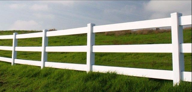 Inexpensive Fence Ideas Fence Design Hog Wire Fence Backyard Fences