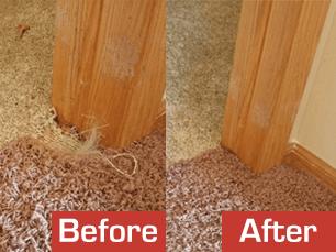 carpet restoration melbourne